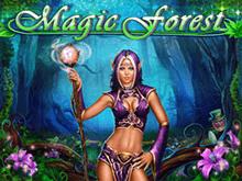 Magic Forest – игровой автомат от Playson