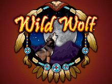 Wild Wolf – играйте в игровой автомат с призовыми спинами онлайн в казино!